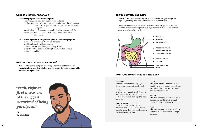 bowel-background-2-3_R